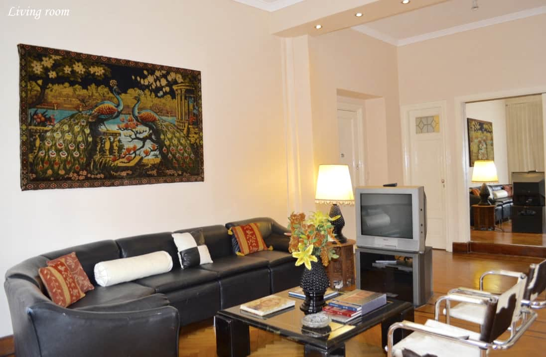 Living room with guest toilette, comfortable sofa, cowhide chairs & cable Tv